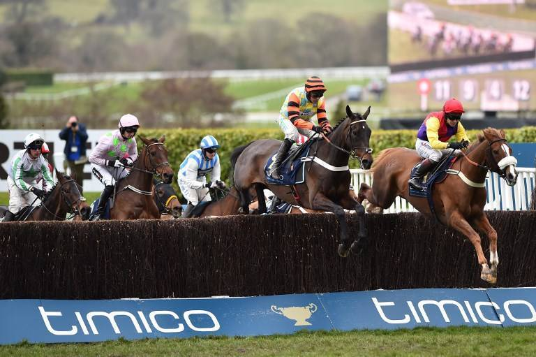 Cheltenham Free Bets & Betting Offers on Cheltenham Festival