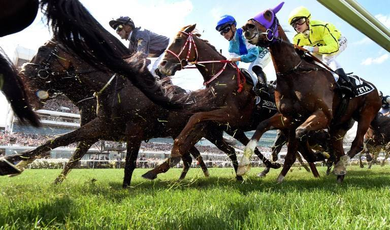 Horse Racing Tips for Saturday 15th August & Sunday 16th August 2020