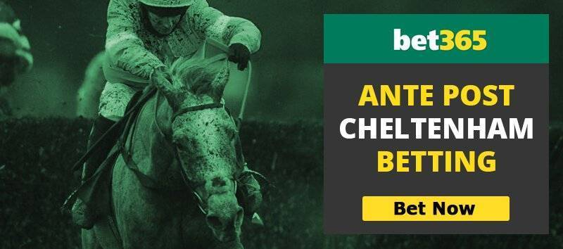 Bet365 Cheltenham Ante Post