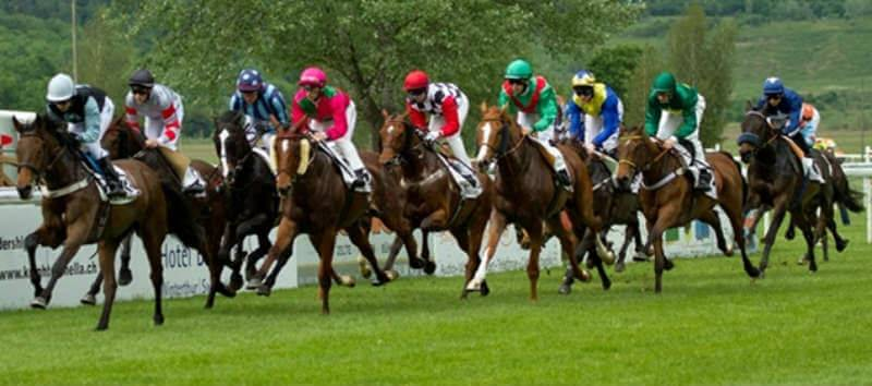 Betting on Grand National 2016