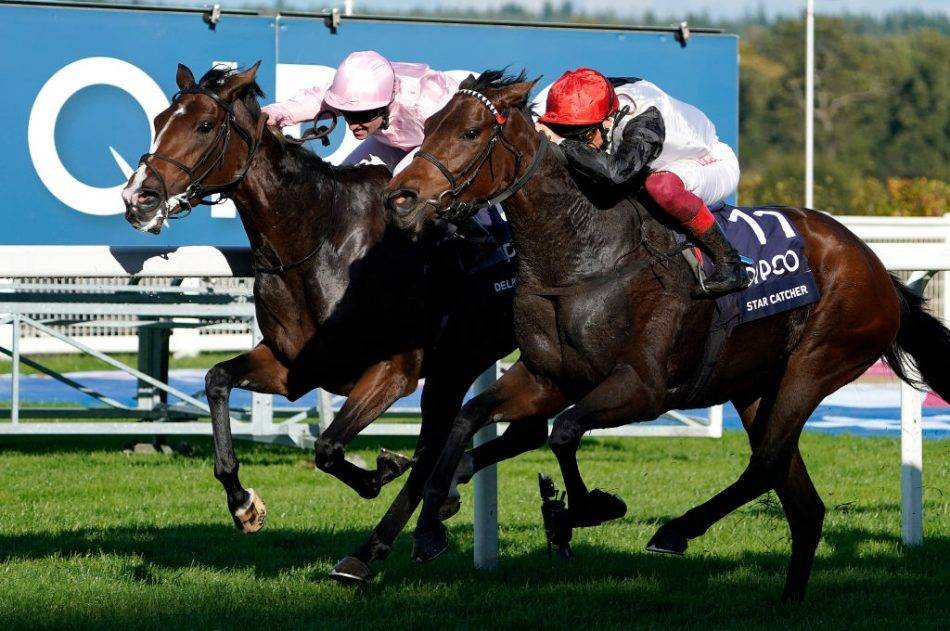 Horse Racing Tips for Saturday 17th October 2020