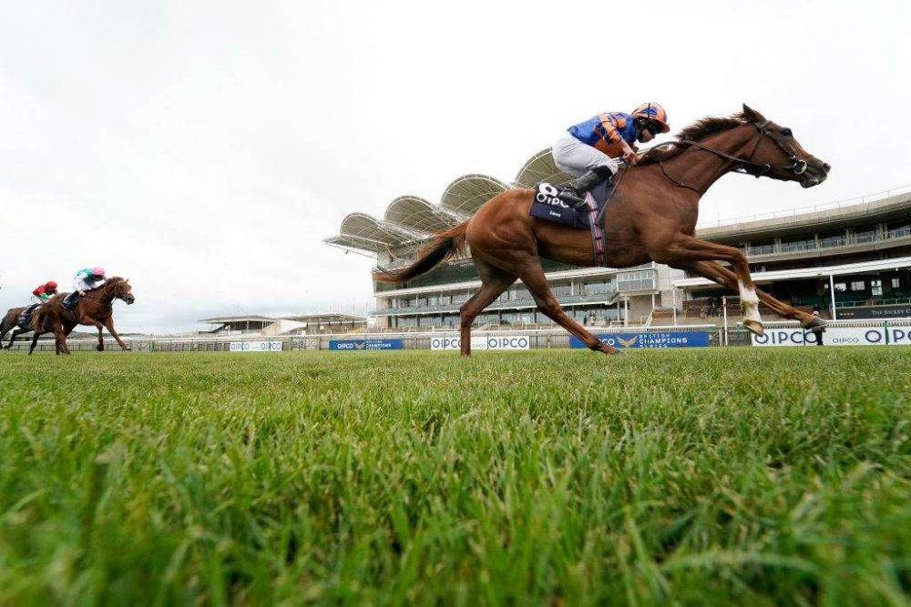 1000 guineas betting odds sports betting handicap explained