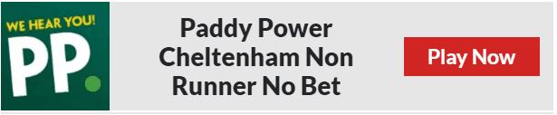 Paddy Power Non Runner No Bet