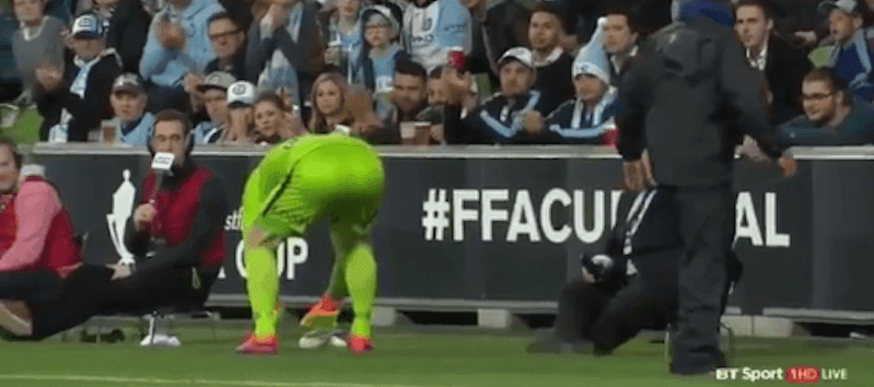 Sydney FC goalkeeper Danny Vukovic, tends to an injured seagull.