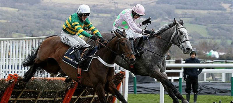 Free Bets on Cheltenham 2016