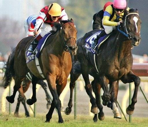 British horse Alkaased (L) with jockey Lanfranco Dettori of Italy races neck and neck with Japanese horse Heat's Cry (R) with French jockey Christophe Lemaire at the Japan Cup horse racing tournament at the Tokyo race course, 27 November 2005. Alkaased won the 2,400m race in a course record of 2 min, 22.1 sec. AFP PHOTO / Yoshikazu TSUNO / AFP PHOTO